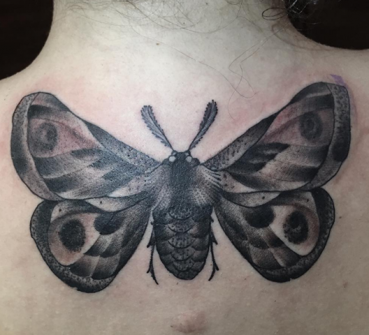 Guy Ursitti  tattoo tatovering moth black