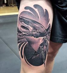 Jeppe Isbak Color Perception Tattoo shark