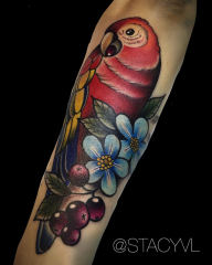 Stacy Color Perception tattoo parrot