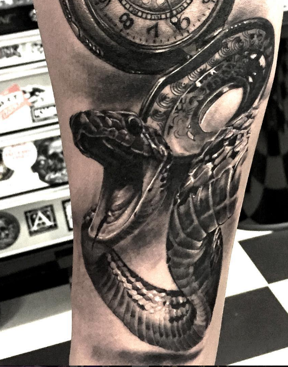 Pedro Leon Studio 73 Tattoo black n grey realism snake